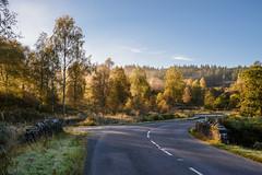Dukes Pass (Sarah-86) Tags: nikond810 landscape scotland autumn mist trossachs highland trees woodland