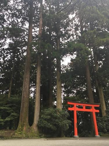 Tokyo Day 2