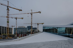 Cranes and construction (AstridWestvang) Tags: architecture building construction crane opera oslo snow