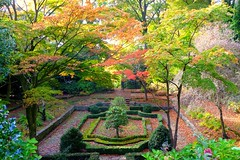 The Dutch Garden. (Brimack) Tags: thedutchgarden camphill woolton liverpool