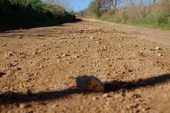 DSCF0092 (elmartin76) Tags: valles palau sentmenat track path stones