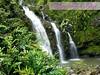 happy-aloha-friday09302016 (alohaelegant) Tags: alohafriday tgif