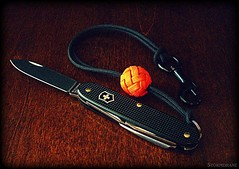 Halloween day pocket knife carry (Stormdrane) Tags: paracord lanyard knot gaucho wrist stormdrane victorinox sak swissarmyknife orange black stainlesssteel knife blade can bottle opener wirestripper screwdriver awl swivelclip snaphook edc everydaycarry pocketdump halloween october 31 monday