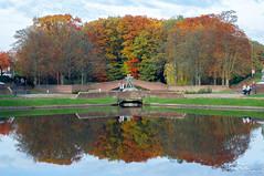 20161030-154142-StAn (St Co) Tags: 2016 belgië boom eigendomstevenancorsmit europa gebeurtenis gemeentparkboom jaar locatie monumentenboom provincieantwerpen shoot stoefshoot vlaanderen be