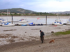 Walking the dog (Snapshooter46) Tags: conway conwy northwales walkingthedog boats moorings beach river people