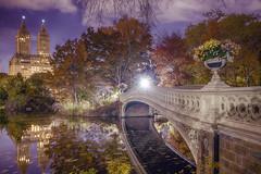 Bow bridge (Alexander Marte Reyes) Tags: bowbridge newyorkcity centralpark longexposure nightphotography nature reflection trees flowers river water