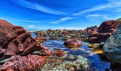 Red Rocks (stewartbaird) Tags: blue landscape water sky sunlight southcoast newzealand wellington rocks