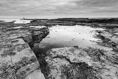 Newbiggin (ca2cal) Tags: england northumberland newbiggin newbigginbythesea northsea sea coast water waterscape sky cloud low tide lowtide rock rockpool beach seaweed longexposure tripod blackandwhite bw black white mono monotone website project366