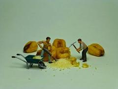 H0 (1:87) Figuren neben Maiskörner. (cosmosminimus, dioramas 1:87 (H0)) Tags: h0 187 jo jucker mais maiskörner corn maiz kernet grano de preiser noch