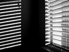 Blind {328/366} (therealjoeo) Tags: shadow light blackandwhite texas 365 365project 366 blinds shade