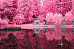 Rosatti Reflection (jrseikaly) Tags: ir infrared pink reflection cemetery nyc new york city brooklyn greenwood tomb grave lake still nature color canon jack seikaly jrseikaly photography