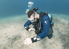 03.11 19 (KnyazevDA) Tags: diver disability undersea padi paraplegia amputee underwater disabled handicapped owd aowd scuba