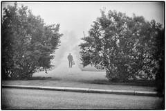 A foggy day II