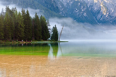 Lago di Dobbiaco/Toblacher see. Dettaglio/Detail (Corsaro078) Tags: mist mountain lake tree water landscape lago nebbia albero acqua montagna paesaggio 258 153 toblachersee lagodidobbiaco