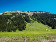 Hoher Ifen (McMac70) Tags: sky nature forest landscape natur himmel landschaft wald nikoncoolpixp300