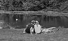 YOUNG LOVE (erms81) Tags: life park plaza sunset summer people italy panorama orange white lake holiday black rome holland english love nature netherlands dutch look amsterdam bike canon square landscape lago photography landscapes photo duck kiss holidays europe picnic groen heaven foto affection familie paar younglove visit amour baci dolphins iloveyou loves mooi olandesi vondelpark amore paesaggio olanda bacio homeland landschap bicicletta hollander turista papera vriend hollande vriendin nederlandse innamorati iamamsterdam olandese museumplain canon24105 dundoek canon5dmarkii nieuwepark vandenvondel vondelparkvannacht