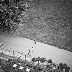 ... is it love? (city/human/life (very busy)) Tags: park autumn people blackandwhite bw white black love berg stairs germany hearts deutschland nikon stuttgart laub herbst wiese tourists menschen september sw sight aussicht visitors visitor turm bume quarry baum schwarz liebe besucher chl observationtower herzen hgel badenwrttemberg weis killesberg killesbergturm publicpark aussichtsturm d90 rosensteinpark schwarzweis parkanlage hhenparkkillesberg stuttgartnord nikond90 grnesu cityhumanlife schlossgartenanlagen