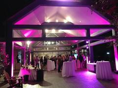 Pink Lighting - Architectural Lighting - Umlauf Sculpture Garden