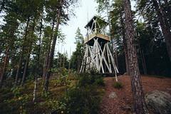 Vaellus Päijätsalo (Outdoors Finland) Tags: sysmä syksy kansallispuisto päijänne vaellus sieniretki retkeily päiväretki päijänteen päijätsalo outdoorsfinland outdoorsfinlandetelä