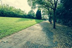 Memory Lane (David Allen's Photostream) Tags: autumn fall nikon colours miltonkeynes path perspective wideangle memory 1635 d600 1635mm