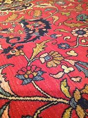 carpet pouchie153