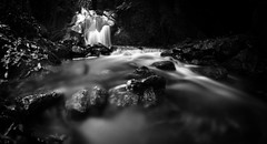 gmic black and white with vignetting (Emanuele Poggix) Tags: d7000 samyang8mmf35