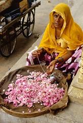 Pushkar, Rajasthan, India, 1986 (Photox0906) Tags: street pink flowers woman india rose yellow lady fleurs jaune collier necklace asia asien basket femme asie dame pushkar rue sari indien seller safran rajasthan saffron inde panier vendeuse