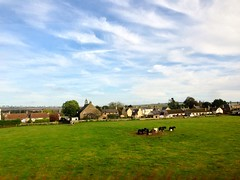 Photo of Scottish rural scene