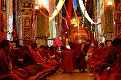 Sichuan (四川), Ganzi (甘孜, དཀར་མཛེས་), April 2013 (Foooootooooos) Tags: china travel tibetans lunch nikon buddhism study monastery sichuan ganzi buddhists 四川 tibetanbuddhism travelphotography 甘孜 reisfotografie yellowhatsect d7000 དཀར་མཛེས