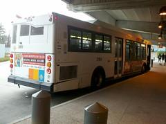 (Metro Atlanta Transit Productions) Tags: new bus train ga la flyer natural state metro five gas short points orion northamerica marta vii cng winnpeg 1427 c40 nfi d40 1480s 1400s d40lf lowfloor 1401 1481 c40lf martatrain 07501 martabus xcelsior flickrandroidapp:filter=none xn40 martanewbus xn35 marta1500s marta1400smartaxcesiorbus