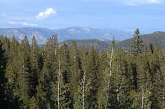 Sierra Nevada Mountains - Minaret Vista - Inyo National Forest - Madera County - California - 11 July 2013 (goatlockerguns) Tags: california county trees usa mountains nature clouds america madera natural minaret unitedstatesofamerica scenic vista sierranevada mammothmountain