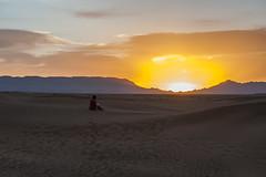 Sunrise in Sahara Desert, August 2013 (Filippo Gagliesi) Tags: life light portrait sunrise freedom women alone desert bambini daughter documentary son marocco medina donne lonely zagora survivor reallife reportage marakech sopravvivere rhamadan