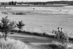 Torres (1BlancaPhotography) Tags: madrid city horses blackandwhite naturaleza men nature contrast photography nikon walk sierra paseo contraste campo torres fotografa madrilea d3000 vision:text=0827 vision:outdoor=0933 vision:ocean=0528