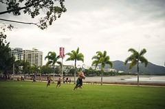 Playing rugby with kids (snowpine) Tags: street people playing sport kids fun happy nikon rugby candid streetphotography australia palmtree cairns fatherson xuesongliao