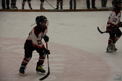 FASS_BAM_250114_0066inet (Cornerbreaker Pictures) Tags: berlin bambini mk2 halle nord saison eishockey fass esv odm kleinstschler 20132014