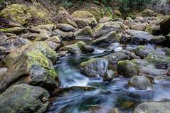 Pescadero Creek (Juro_Photography) Tags: nature water creek river outdoors sony longexposurephotography a580