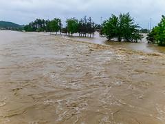 P1080508 (Stefan Teodosić) Tags: nature water rain flood floods catastrophy poplava poplave destaster
