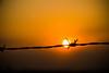 Itu Sunset (brvboas) Tags: light sunset brazil sky sun sol field brasil sunrise landscape flickr do campo itu ceu por nofilter arame farpado