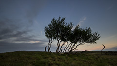 Næfurholt - Tolkien place in south Iceland (Julien Ratel ( Júllí Jónsson )) Tags: blue trees sunset moon green canon river landscape iceland peaceful area lordoftherings paysage campaign tolkien islande hekla icelandic landslag southiceland efs1022 islenska næfurholt eos7d blueju38 julienratel lýðveldiðísland næfurholtsfjöll julienratelphotography landslagsmynd blueju islenski misterclic juliendesclics bjólfel