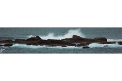 Wedding Cake Island (eggyy101) Tags: wedding cliff fall beach water sign cake danger canon island photography eos photo day crash sydney arts picture wave drop potd edge dslr coogee worldcaptures