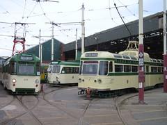 Blackpool Tramway: 675/685, 631 and 304 at Rigby Road Depot (24/09/2016) (David Hennessey) Tags: blackpool tramway twin set brush coronation 675 685 631 304 rigby road depot