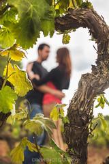 Prenoces A i R (Idranx) Tags: vinyard wedding love couple nature color sky storm tempesta nuvol parella amor prenoces preboda pareja natura naturaleza amapola rosella vinyes vias