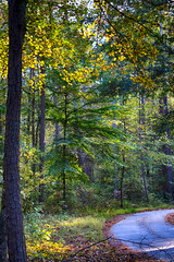 DSC06593-95_HDR (Capt Kodak) Tags: autumn chattahoocheerivernationalrecreationarea fall hdrefexpro2 madefrom3images medlockbridgepark nationalparkservice nikcollectionbygoogle niksoftware photomerge