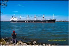 African Raven 1543 LR (bradleybennett) Tags: cargo vessel ship shipping delta water river ocean tanker antioch port stockton african raven africanraven