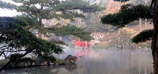 Petit matin de brume sur le lac du parc japonais de Maulévrier