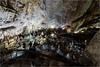 161016 659 grotta gigante (# andrea mometti | photographia) Tags: grotta gigante trieste sgonico caverna stalagtiti stalagmiti umidità