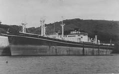 SS Dominator (goweravig) Tags: ssdominator libertyship ship shipping devon southdevon england uk melvillejacoby riverdart palosverdes dominator california