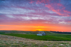 Sunrise Ranch - Sacramento County, California (Tactile Photo | Greg Mitchell Photography) Tags: fineart interiordesign landscape michiganbarroad rollinghills saturday white oldbarn clouds greengrass morning november sunrise barn cattle sacramentocounty jacksonhwy ranchomurieta cattleranch sacramento california color wallart sloughhouse field