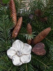 adventliche Deko (gartenzaun2009) Tags: herz deko zapfen tannengrn advent weihnachten