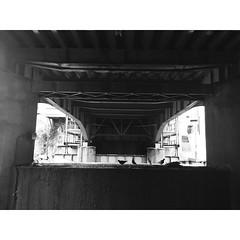(magentaseabreeze) Tags: riverwensom pigeons bridge